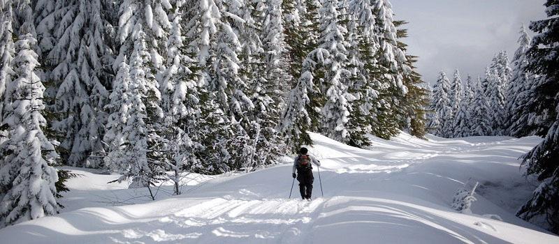 Hood River winter hotel deal